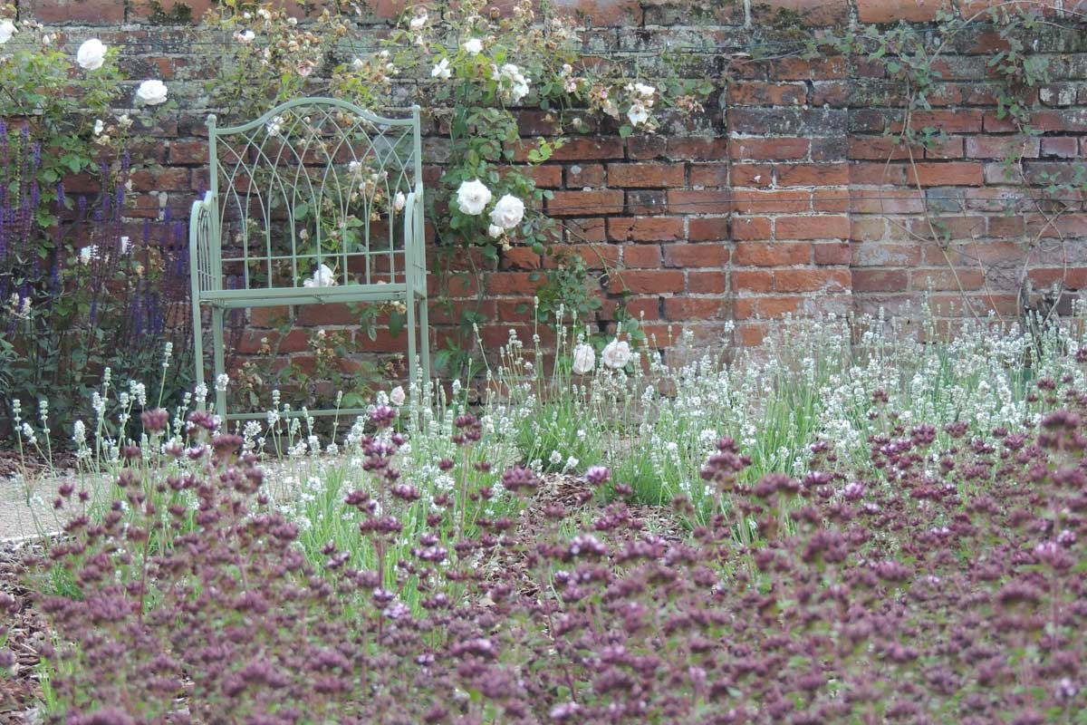 Norfolk garden projects iona hilleary landscape design for Garden design norfolk